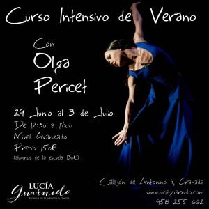 curso de verano 2015 Olga Pericet