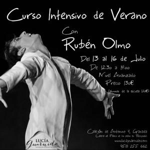curso de verano 2015 Ruben Olmo