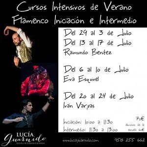 curso de verano 2015 flamenco iniciacion e intermedio 5